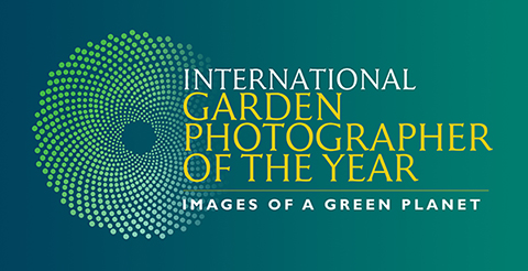 igpoty_official_logo_web
